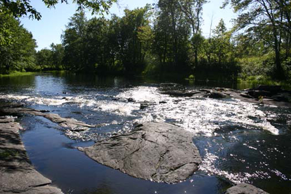 gallery_activities_rapids1