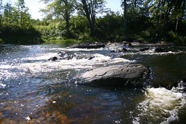 gallery_activities_rapids2