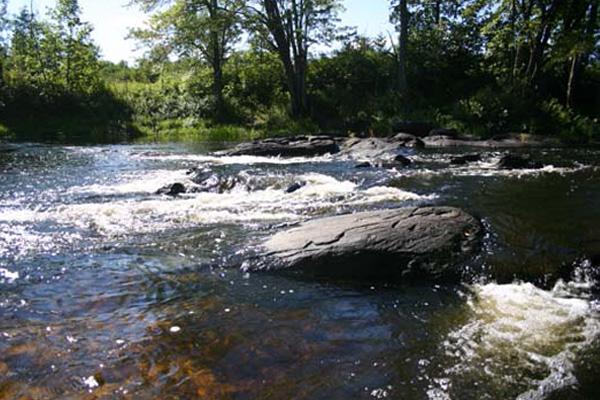 Play in the Skootamatta Rapids