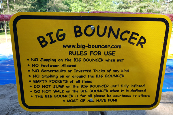 gallery_big_bouncer_rules