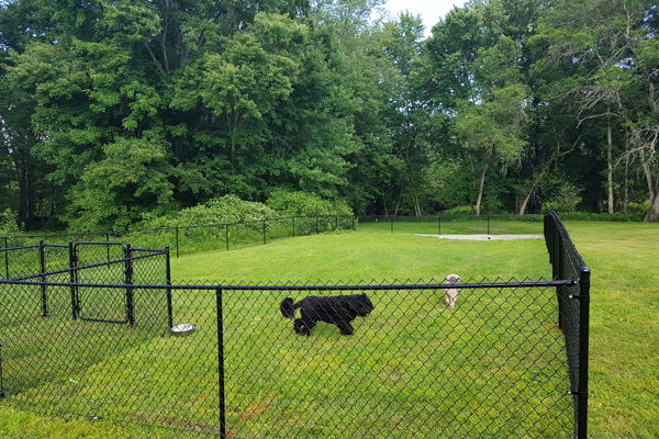 Haid's Hideaway Off Leash Dog Park